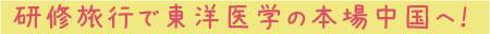 研修旅行で東洋医学の本場中国へ!
